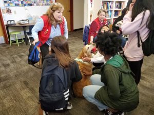 Therapy Dogs Visit NP3 High During Midterms